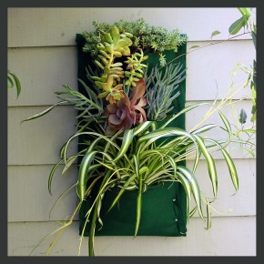 easy & affordable vertical garden project