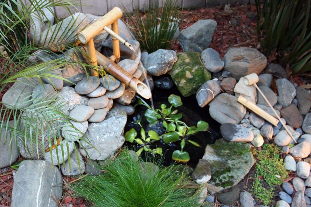 river stones & rocks in garden with aquatic water plants