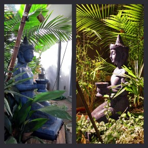 tropical garden asian Buddha garden statue